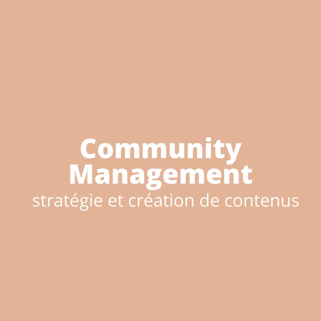 Catégorie Community Management